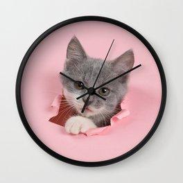 Gray Kitten Wall Clock