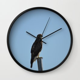 Coopers Hawk On A Post Wall Clock