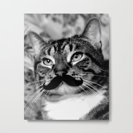 He's a Cat with a Mustache Metal Print
