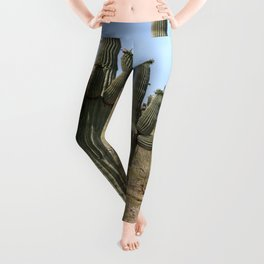A Cacti in the Desert Leggings