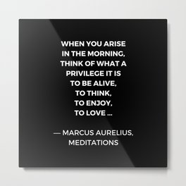 Stoic Wisdom Quotes - Marcus Aurelius Meditations - What a privilege it is to be alive Metal Print