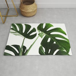 Monsterra Leafs Photography Rug