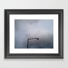 Morning Birds Framed Art Print
