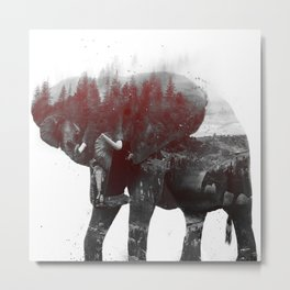 Elephant V1 Metal Print