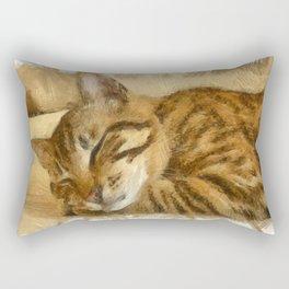 Let Sleeping Cats Lie Rectangular Pillow
