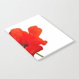 red poppy Notebook