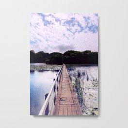 Lilypond Metal Print