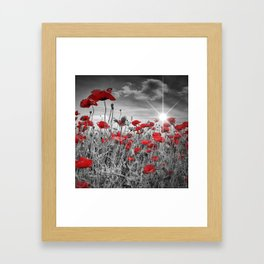 Idyllic Field of Poppies with Sun Framed Art Print