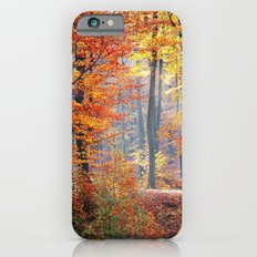 Colorful Autumn Fall Forest iPhone 6s Slim Case