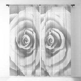 Big White Rose Sheer Curtain