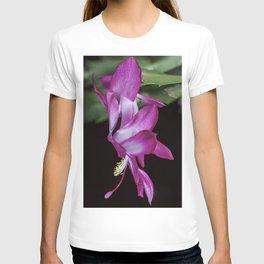 Christmas Cactus flower T-shirt