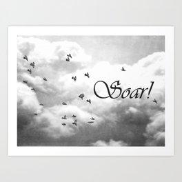 Soar Birds in Flight A610BW Art Print