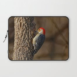 Red-Bellied Woodpecker Drumming Laptop Sleeve