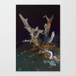 Drifting wood Canvas Print