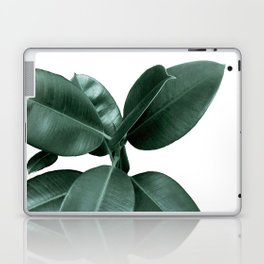 Rubber fig Plant Laptop & iPad Skin