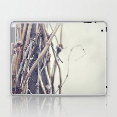 bundled Laptop & iPad Skin