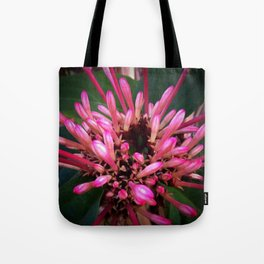 Morning in winter Tote Bag