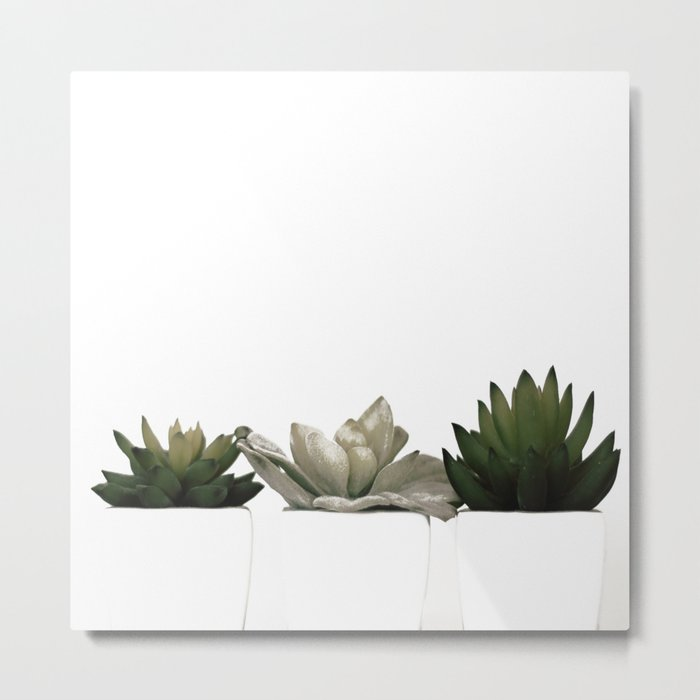Lovely green cactus - cacti in white pots on a white background Metal Print
