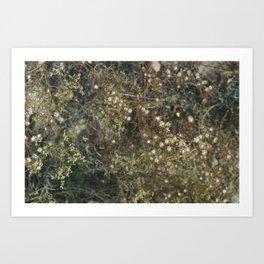 rabbit mountain (2) Art Print