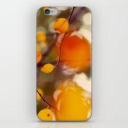 Nutmeg iPhone Skin