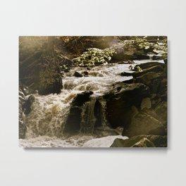 Beamer Falls Metal Print