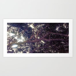 Up above full picture Art Print