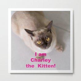 I am Charley the Kitten Metal Print