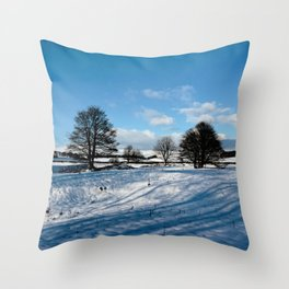 Sparrow pit the peaks. Throw Pillow