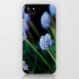 Grape Hyacinth | Nature photography | Fine art Photography | Art Print iPhone Case