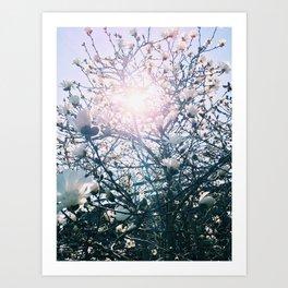 Light Art Print