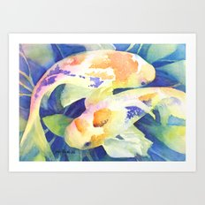 Koi study Art Print