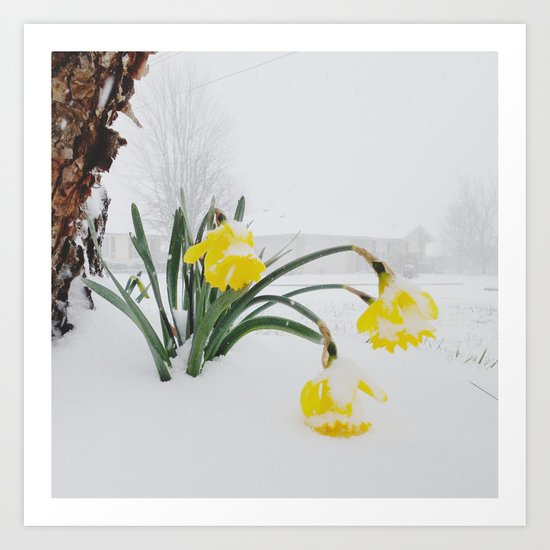 Spring Lost A Bet To Winter Art Print