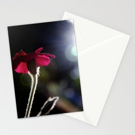 Flower with Sun Outline Stationery Cards