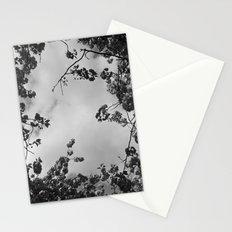 spring black & white Stationery Cards