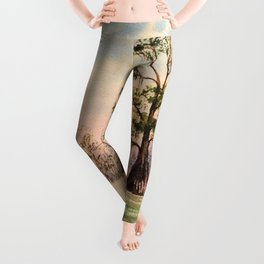 Suwannee River Florida Canoeing Leggings