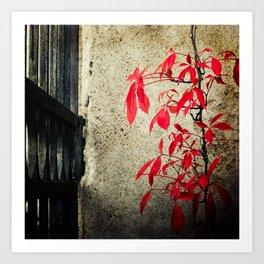 Castle Gate Red Creeper Art Print