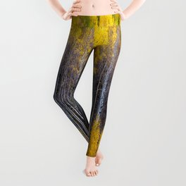 Autumn Aspens - Rows of Colorado Aspen Trees with Autumn Color in Reflection Illusion Leggings