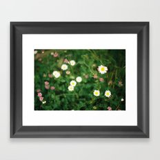 Film Flowers Framed Art Print