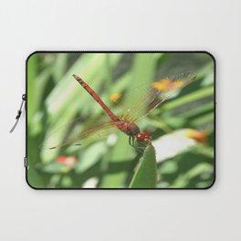 Red Skimmer or Firecracker Dragonfly Laptop Sleeve