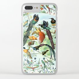Vintage Illustration Bird Chart III  - Tropical Clear iPhone Case