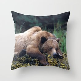 Magnificent Huge Adult Grizzly Bear Sleeping At Seashore Ultra HD Throw Pillow