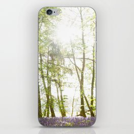 Sunlight Shining on Bluebells in a Woodland iPhone Skin