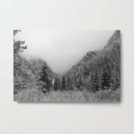 Fog in the Canyon Metal Print