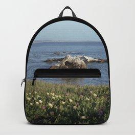 Shell Beach California Backpack
