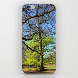 Spring In An English Park iPhone Skin