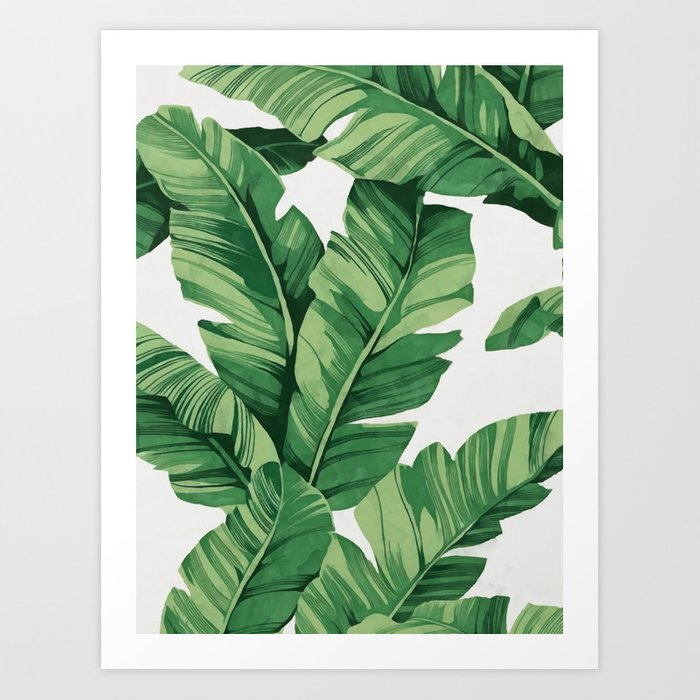 Tropical banana leaves Kunstdrucke