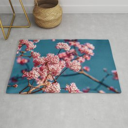 Pink and Blue Rug
