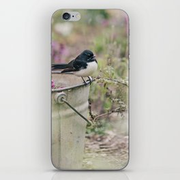 Willy Wagtail... iPhone Skin