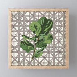 Rattan and Fig Leaves Framed Mini Art Print