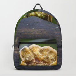 Fungal remains Backpack